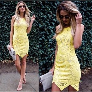 Tea & Cup Yellow Lace Dress- CCO